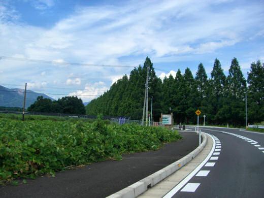 201008 (1).jpg